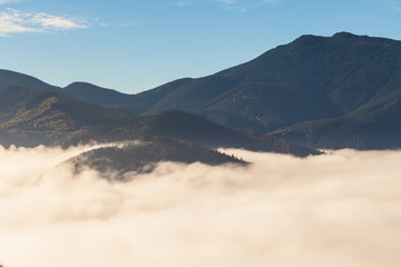 Fog covering the mountain forests