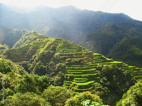 Ryżowi irlandczycy w północy Luzon wyspa, Filipiny
