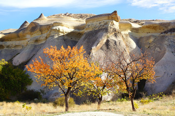 Picturesque rural landscape with hill in Cappadocia.