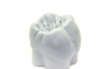 Teeth - molar