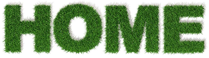 Home casa parola verde erba, scritta isolata su sfondo bianco