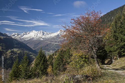 canvas print picture Leventina im Herbst