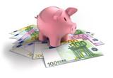 Sparschwein mit Euroscheinen 2