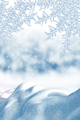 Winter. Snowfall.