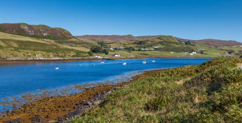 Loch Harport View