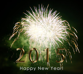 happy new year 2015 - firework by night