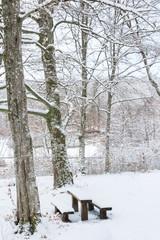Park im Winterkleid