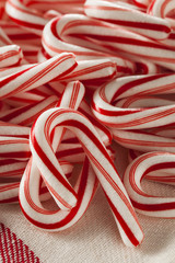 Red and White Mini Candy Canes