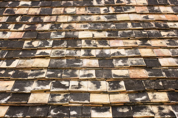 Close-up of roof tiles at Wat Ton Kwain Chiang Mai, Thailand