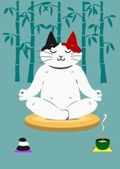 座禅する猫