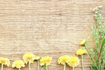 Yellow flower on wood texture