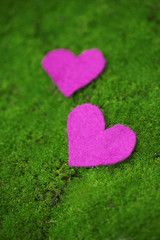 Small hearts on grass close-up