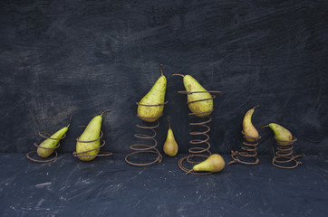 still-life with pears and old rusty springs