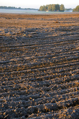 plowed frosty autumn farmland field and mist