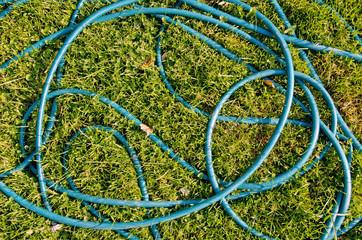 hose pipe on garden grass. garden tool