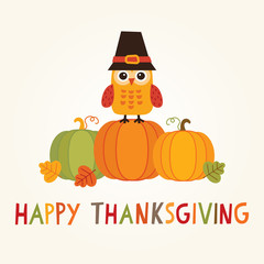 happy thanksgiving card owl pilgrim hat pumpkins