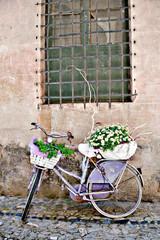 Bicicletta viola