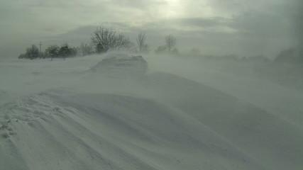 Winter Snow Storm Scene
