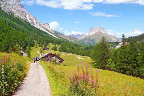 Papiers peints Montagne Chalet et prairie des Alpes