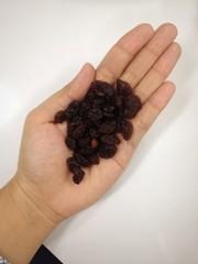 Nutural Seedless Raisins