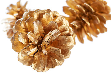 Gold plated pines cone macro isolated
