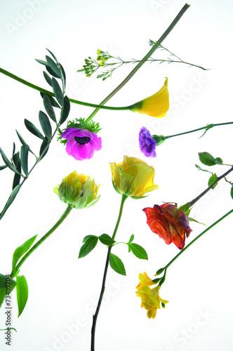 canvas print picture Blumendekoration