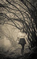 Fata del bosco con lanterna