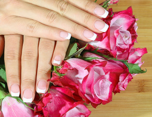 Beautiful woman hands with rose