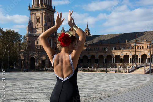 Flamenco dancer - 73414567