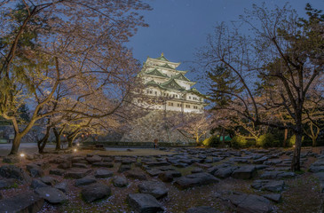 Nagoya castle with the cherry blossoms