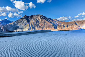 Dunes in Nubra Valley, Ladakh, India