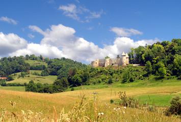 Great view on beautiful Croatian medieval castle