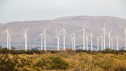 San Gorgonio Pass Wind Farm 2