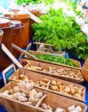 Organic market - 73420330