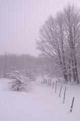 neige_06