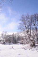 neige_07