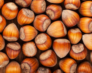 background of dried whole hazel nuts close-up