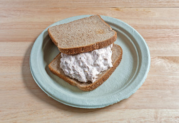 Tuna sandwich on paper plate