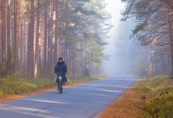 Cyclist in forest early in the morning