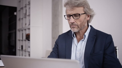 Mature office executive working on his laptop