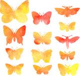 set of butterflies in watercolor