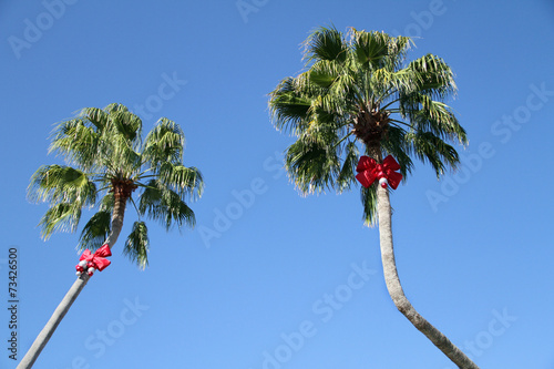 Papiers peints Palmier Holiday Decorated Palm Trees
