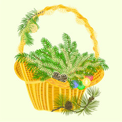 Christmas decoration basket with branches and baubles vector