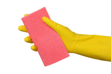 Cleaning equipment, hand in glove holding sponge rag, isolated