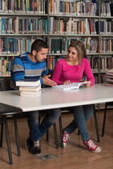 Young Students Working Together In The Library
