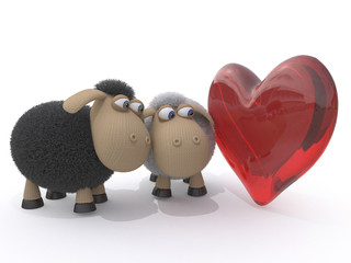 Loving couple of sheep