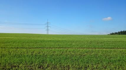 Strommast und Natur grün
