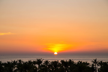 Sunset view above palmtrees