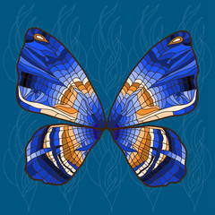 bright background with bright decorative hand - drawn butterfly