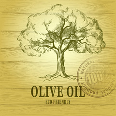 Olive oil. Vector  olive tree. For labels, pack. eco friendly